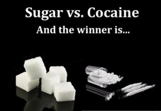 sugar-is-more-addictive-than-cocaine.jpg